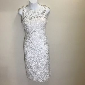 White lace dress Adrianna papell